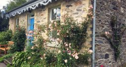 Roses cascading down the front