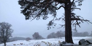 Outlander site in snow